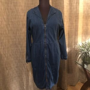 Plus Size 2X Zipper Front Denim Dress